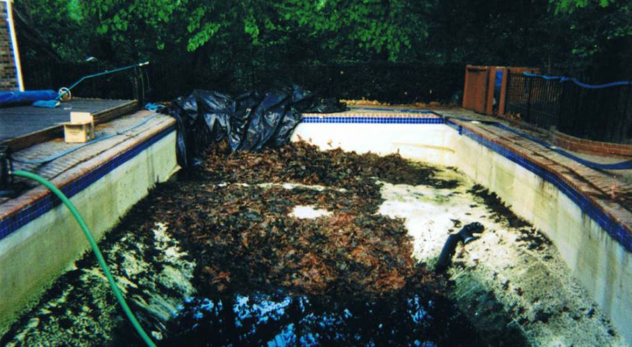 Expert Pool Opening & Closing Service by Thomas Pool Service